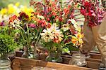 Pour la vente au marché de l'agriculteur biologique de fleur
