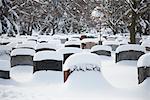 Grabsteine im Park Lawn frischen Schnee, Toronto, Ontario, Kanada