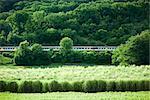 Train voyageant à travers la campagne