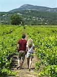 Couple walking through vineyard