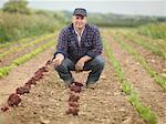 Farmer Tending Crops Crouching In Field