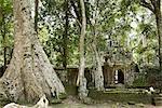 Ankgor Thom, Angkor, Cambodia