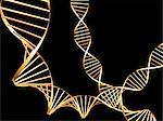 DNA molecules, computer artwork.