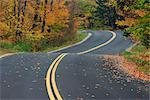 Route à travers la forêt en automne, Vermont, USA