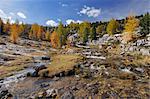 Brook, Fanes Alps, Fanes-Senes-Braies Natural Park, South Tyrol, Italy
