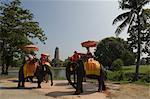 People Riding on Elephants, Ayutthaya, Thailand