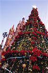 Weihnachtsbaum, San Miguel de Allende, Guanajuato, Mexiko