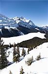 Peyto Lake, Parc National Banff, montagnes Rocheuses, Alberta, Canada