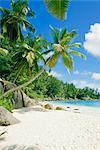 Anse Intedance, Mahe, Seychelles, Indian Ocean