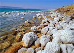 La rive orientale de la mer morte, avec concentration en sel de plus de 20 % de chlorure de sodium (aussi riche en magnésium, calcium et chlorure de potassium, Jordanie