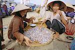 Matin marché aux poissons, Nha Trang, Vietnam, Indochine, Asie du sud-est, Asie