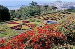 Jardim Botanico (jardin botanique), Funchal, Madeira, Portugal, Atlantique, Europe