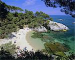 Typical Costa Brava scenery near S'Agaro, Costa Brava, Catalunya (Catalonia) (Cataluna), Spain, Europe