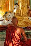 Moine bouddhiste adorant, Shwedagon Paya (Shwe Dagon Pagoda), Yangon (Rangoon), Myanmar (Birmanie)