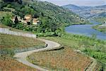 Vallée du Douro, le Quinta do Monrao, Portugal, Europe