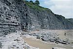 Lias de roches sédimentaires, bleu, séquences de shale calcaire, Lyme Regis, Jurassic coast, UNESCO World Heritage Site, Dorset, Angleterre, Royaume-Uni, Europe