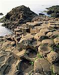 Giants Causeway, patrimoine mondial UNESCO, comté d'Antrim, Ulster, Irlande du Nord, Royaume-Uni, Europe