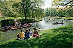 Punting on the River Cam, Cambridge, Cambridgeshire, England, United Kingdom, Europe