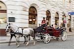 Horse-drawn tourist carriage near Hofburg, Vienna, Austria, Europe