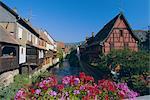 Maisons de colombage pittoresque sur les rives de la rivière Weiss, Kaysersberg, Haut-Rhin, Alsace, France, Europe