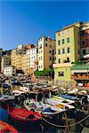 Camogli, péninsule de Portofino, Ligurie, Italie, Europe
