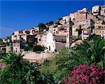 Vue de l'église et du village sur la colline, Lumio, près de Calvi, Haute-Corse, Corse, Méditerranée, France, Europe