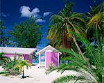 Colourful beach hut beneath palm trees, Rum Point, Grand Cayman, Cayman Islands, West Indies, Caribbean, Central America