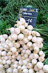 Oignons de printemps (oignons salade) en vente sur le marché dans la Rue Sainte Claire, Annecy, Haute-Savoie, Rhône-Alpes, France, Europe