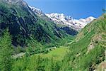 Gran Paradiso National Park, Valnontey Valley near Cogne, Valle d'Aosta, Italy