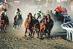 Chuck Wagon Race, Calgary Stampede, Alberta, Canada