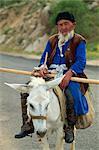 Portrait of an old Uzbek farmer on a donkey, Shakhrisabz near Samarkand, Uzbekistan, Central Asia, Asia
