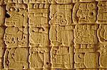 Sculptures mayas sur la stèle, Tikal, au Guatemala, l'Amérique centrale