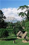 Mayan ruins, Quirigua, UNESCO World Heritage Site, Guatemala, Central America