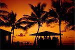 Bar au coucher du soleil, Antigua, Antilles, Antilles
