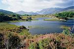 Lac supérieur et Reeks du Macgillycuddy, anneau du Kerry, Killarney, comté de Kerry, Munster, République d'Irlande (Eire), Europe