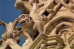 Gargouilles sur Notre Dame de Paris, Paris, France, Europe