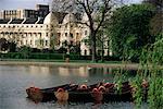 Boote auf dem See, Regents Park, London, England, Vereinigtes Königreich, Europa