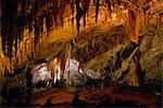 Grottes de Carlsbad, Carlsbad Caverns National Park, l'UNESCO World Heritage Site, Nouveau-Mexique, États-Unis d'Amérique, l'Amérique du Nord