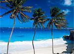 Baie de fond, Barbade, Antilles, Caraïbes, Amérique centrale