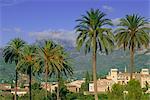 Soller, Majorque (Mallorca), îles Baléares, Espagne, Europe