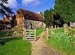 St. Bartholomew's church, built circa 1060, the smallest church in Surrey, Wanborough, Surrey, England, United Kingdom, Europe