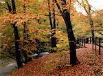 Jour d'automne venteux de la passerelle de la rivière Brathay, pont Skelwith, Cumbria, Angleterre, Royaume-Uni, Europe