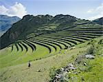 Inca terrace still in use, Pisac, near Cuzco, Peru, South America
