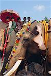Mahoot and boys on decorated elephants at a roadside festival, Kerala State, India, Asia