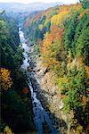 La rivière Ottauquechee, Quechee Gorge, Vermont, États-Unis d'Amérique