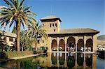 Jardins du Partal, Alhambra, Site du patrimoine mondial de l'UNESCO, Grenade, Andalousie, Espagne, Europe