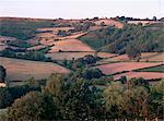 Golden Valley, Herefordshire, England, United Kingdom, Europe