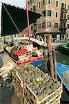 Étal de marché aux légumes près du canal, Venise, Vénétie, Italie, Europe