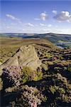 Whinstone Lee Tor and Derwent Moors, Derwent Edge, Peak District National Park, Derbyshire, England, United Kingdom, Europe