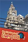 Sightseeing bus and Liver Building, Albert Dock, Liverpool, Merseyside, England, United Kingdom, Europe